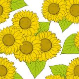 Beautiful seamless background with sunflowers. Royalty Free Stock Photos