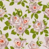 Beautiful Seamless color rose pattern, Stock Photos