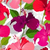 Beautiful seamless floral jungle pattern background. Tropical flowers bright color background. Hibiscus flower realistic. Beautiful seamless floral jungle vector illustration