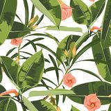Beautiful seamless floral pattern background with exotic bright ficus elastica and exotic flowers. Perfect for wallpapers, web page backgrounds, textile. White stock illustration