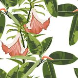 Beautiful seamless floral pattern background with exotic bright ficus elastica and exotic orange lilies flowers. Perfect for wallpapers, web page backgrounds vector illustration