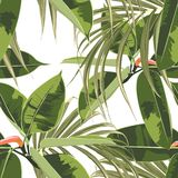 Beautiful seamless floral pattern background with exotic bright ficus elastica and palm leaves. Perfect for wallpapers, web page backgrounds, textile. White stock illustration