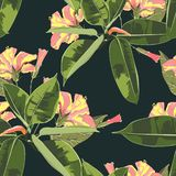 Beautiful seamless floral pattern background with exotic bright ficus elastica and yellow hibiscus flowers. Perfect for wallpapers, web page backgrounds stock illustration