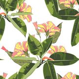 Beautiful seamless floral pattern background with exotic bright ficus elastica and yellow hibiscus flowers. Perfect for wallpapers, web page backgrounds vector illustration