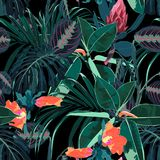 Beautiful seamless floral pattern background with tropical dark jungle plants and flowers. Perfect for wallpapers, web page backgrounds, surface textures stock illustration