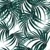 Beautiful seamless floral pattern background with tropical palm leaves. Perfect for wallpapers. Web page backgrounds, surface textures, textile. White vector illustration