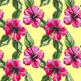 Beautiful seamless floral pattern background with Royalty Free Stock Photos