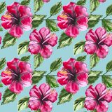 Beautiful seamless floral pattern background with Stock Images