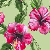 Beautiful seamless floral pattern background with Royalty Free Stock Photography