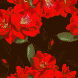 Beautiful seamless floral pattern Stock Image