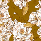 Beautiful seamless floral pattern Stock Photography