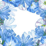 Beautiful seamless floral pattern Royalty Free Stock Image