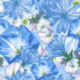 Beautiful seamless floral pattern Royalty Free Stock Photos