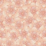 Beautiful seamless floral pattern . Flower vector illustration. Field of flowers.  Stock Photography