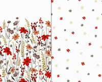 Beautiful seamless floral pattern set . Flower vector illustration. Field of flowers.  Royalty Free Stock Images