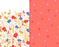 Beautiful seamless floral pattern set . Flower vector illustration. Field of flowers.  Stock Photo
