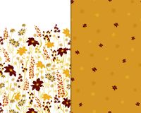 Beautiful seamless floral pattern set . Flower vector illustration. Field of flowers.  Stock Image