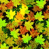 Beautiful seamless  pattern background with autumn leaves and animal prints.Perfect for wallpapers, web page backgrounds, su. Rface textures, textile Royalty Free Stock Photos