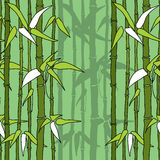 Beautiful seamless pattern with bamboos Stock Photos