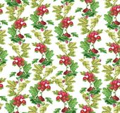 Beautiful seamless pattern with bright Gooseberry ornament. stock illustration