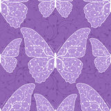 Beautiful seamless pattern with butterflies Stock Photos