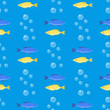 Beautiful seamless pattern with colorful sea fishes marine underwater aquarium animals fishing life ocean water vector Royalty Free Stock Photo