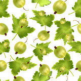 Beautiful seamless pattern with realistic green gooseberry on a white background. Seamless pattern with 3d mesh green. Beautiful seamless pattern with 3d Stock Photography