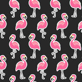 Beautiful seamless pattern with flamingo stickers on black background Stock Photography