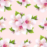 Beautiful seamless pattern with flowers sakura vector illustration