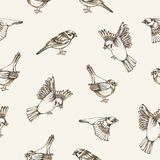 Beautiful seamless pattern with flying and sitting sparrows on light background. Backdrop with cute small city bird Royalty Free Stock Photos