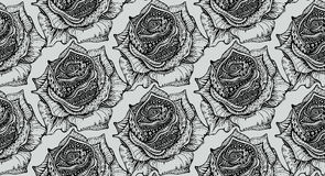 Beautiful seamless pattern with hand drawn ornate rose flowers Stock Image