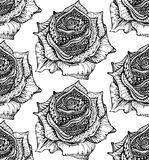 Beautiful seamless pattern with hand drawn ornate rose flowers i Stock Photography