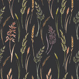 Wild field grass pattern. Beautiful seamless pattern with hand drawn watercolor wild field grass Royalty Free Stock Image