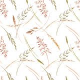 Wild field grass pattern. Beautiful seamless pattern with hand drawn watercolor wild field grass Stock Photos
