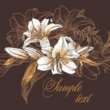 Beautiful seamless pattern with lilies Royalty Free Stock Image