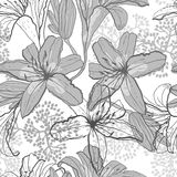 Beautiful seamless pattern with lilies, vector Stock Photo