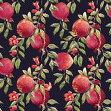 Pomegranate fruit pattern. Beautiful seamless pattern with nice hand drawn watercolor pomegranate fruit Royalty Free Stock Photos