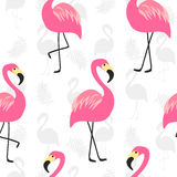 Beautiful seamless pattern with pink flamingo Royalty Free Stock Photography