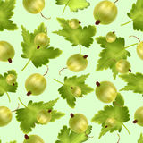 Beautiful seamless pattern with realistic green gooseberry on a green background.. Beautiful seamless pattern with 3d realistic green gooseberry on a green Stock Photography