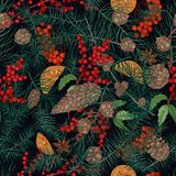Beautiful seamless pattern with realistic natural christmas decorations or parts of winter plants - coniferous tree. Needles, cones, orange pieces, star anise Royalty Free Stock Photos
