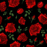 Beautiful seamless pattern with red roses on black background.Vector illustration. Royalty Free Stock Images