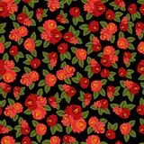 Beautiful seamless pattern with red roses on black. Vector illustration Stock Photos