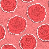 Beautiful seamless pattern in red roses with contours. Royalty Free Stock Images