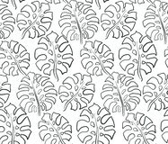 Beautiful seamless pattern with ropical jungle palm leaves. stock image
