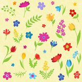 Beautiful seamless pattern with spring flowers Royalty Free Stock Photography