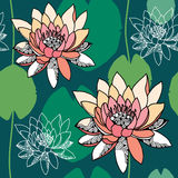Beautiful seamless pattern with water lilies on a dark green background. Stock Photos
