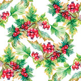 Beautiful seamless pattern in watercolor branches with rowan berries Royalty Free Stock Photography