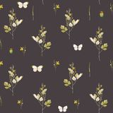 Watercolor floral pattern. Beautiful seamless pattern with watercolor wild field summer flowers Stock Photography