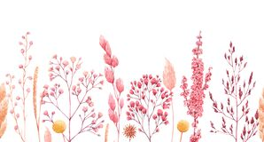 Free Beautiful Seamless Pattern With Watercolor Herbarium Wild Dried Grass In Pink And Yellow Colors. Stock Illustration. Stock Images - 170168704