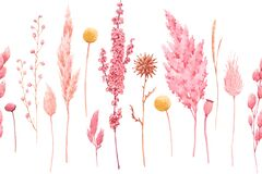 Free Beautiful Seamless Pattern With Watercolor Herbarium Wild Dried Grass In Pink And Yellow Colors. Stock Illustration. Stock Photos - 171008503